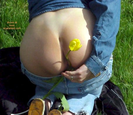 Pic #1Wijfies flowerview