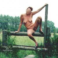 Dutch NIP 4
