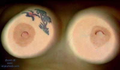Pic #1 GF      Tits