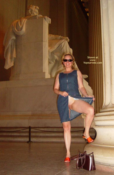 Pic #1 Flash Cards Bunny At Washington, Dc 2