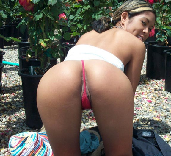 Pussy Peeking From Behind Thong - Thong , Pussy Peeking From Behind Thong, Red Thong Covering Asshole, Doggy Style Thong, Eatable Asian Ass And Pussy