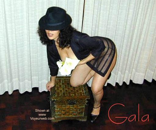 Pic #1 Gala y Flores
