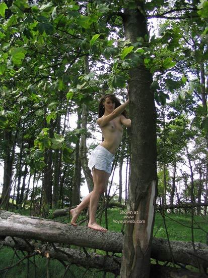 Pic #1 Slavegirl Penny  Climbing The Tree
