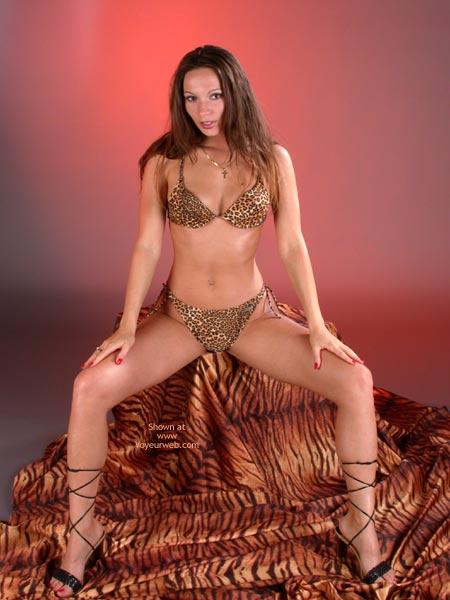 Pic #1 *Lg Natalie In Tiger Look