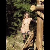Abenteuer Im Zauberwald