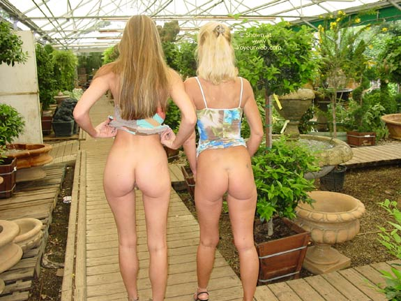 Two Girls - Exposed In Public, Girls, Long Legs , Two Girls, Gap Between Legs, Dress Pulled Up, Long Legs, No Knickers, Greenhouse Ass Attack, Exposed In Public, Multi Color Summer Dress