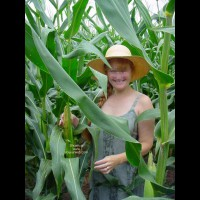 Jigsey's Corn Field