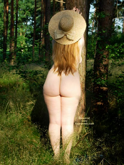 Pic #1 Gina Deen 11 Sunny Morning In The Woods Ii