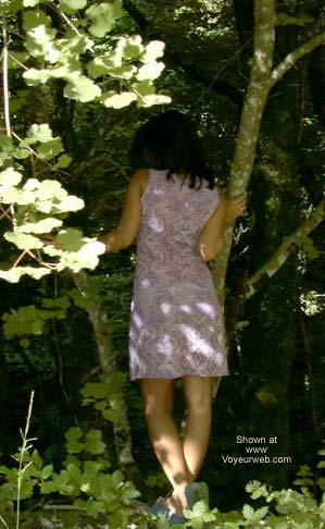 Pic #1 Aiko Likes The Forest