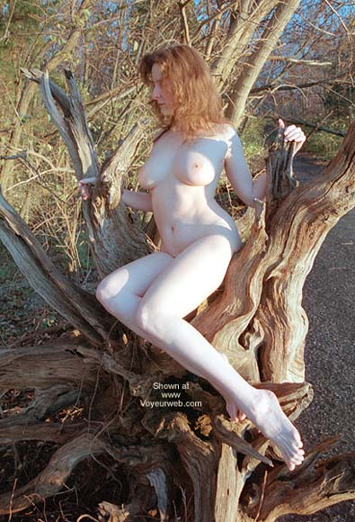 Pic #1 English Wife - Driftwood