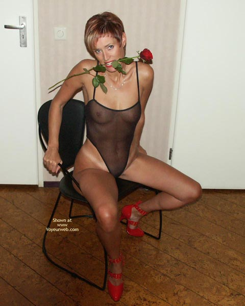 Girl Sitting On A Chair , Girl Sitting On A Chair, Red Strap Heels, Mesh Body Stocking, Tight Tan Body, Rose In Mouth, Seethrough