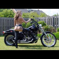 Harley Dream