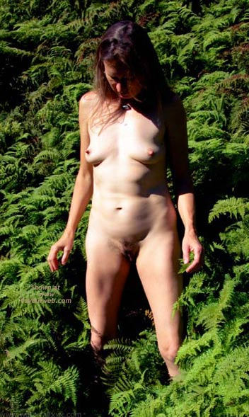 Pic #1 Amongst The Ferns