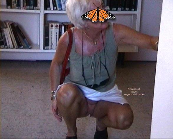 Pic #1 Papillon Française