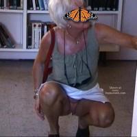 Papillon Française
