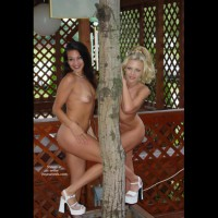 Miss Nude North America 2