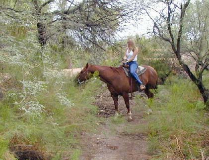 Pic #1 Naked Horseback Riding