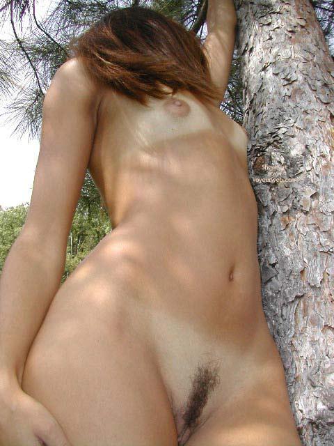 Nude Outdoors - Landing Strip, Nude Outdoors , Nude Outdoors, Outdoors Against  A Pine Tree, Landing Strip, Auburn Hair