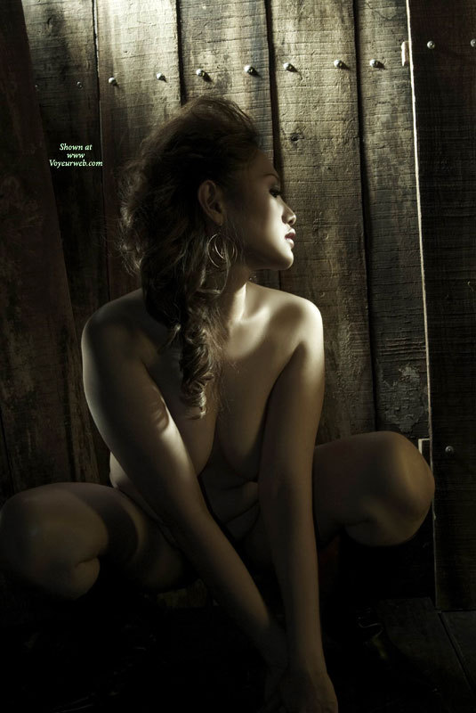 Nude Asian In Sepia - Long Hair, Naked Girl, Nude Amateur , Nude Art, Sensuous Mouth, Study In Lighting, Sexy Sultry Facial Expression, Pretty Asian With Highlights, Hot Large Tits, Artistic Outdoors, Curly Hair