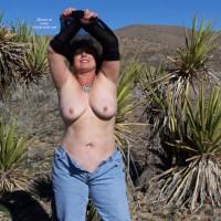 Mojave Madness