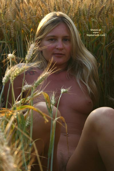 Pic #1 Elise In A Golded Wheat Field