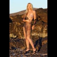 Amber On The Lava Rocks