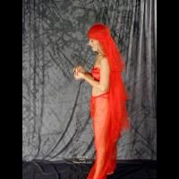 TL Arabian Nights Undressed