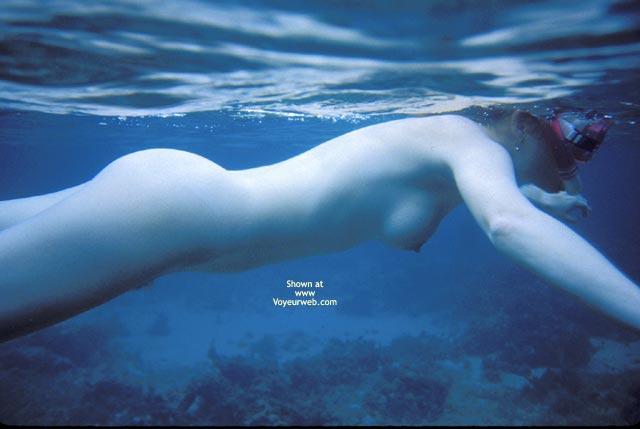 Nude Snorkeller - Nude Amateur , Swimming Just Under The Surface, Blue Babe, Skin Diving, Naked Snorkeling, Blue Snorkler, Underwater Nude, Nude  Underwater, Naked Swimmer, Diving In Nude, Rare Mermaid Sighting