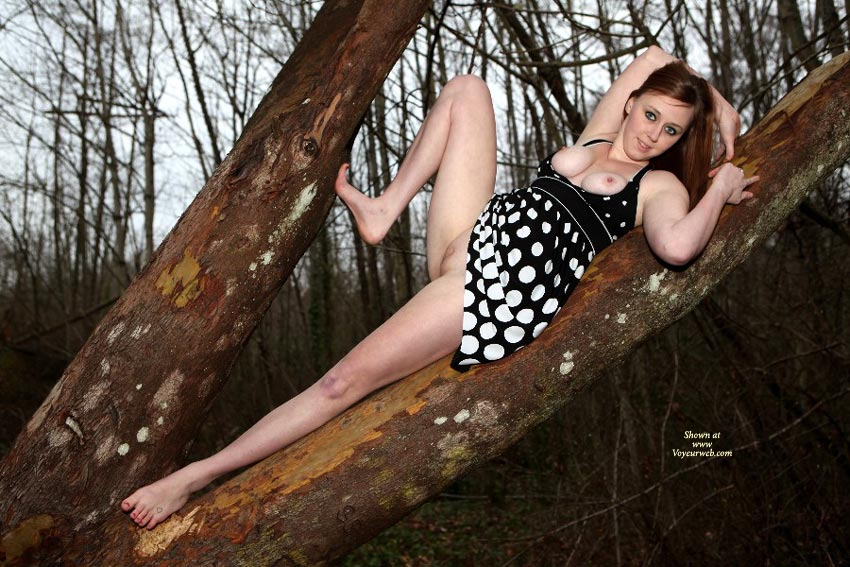 Tree Hugger - Brunette Hair, Long Hair, Perfect Tits, Red Hair, Naked Girl, Nude Amateur , Black Dress With White Polka Dots And Black Waist, Young British Exposed, Brunette Posing In Tree, Stretched Leg, Black Dress With White Pokadots, Nude In Woods, Black And White Polka Dots, Black And White Dress No Panties, Long Red Hair, Dress With No Underwear
