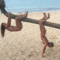 Hanging On Palm Tree , Hanging On Palm Tree, Two Nudes, Nude At Beach, Hanging By A Palm Tree, Naked Girls On A Beach, Monkey See, Girl On Tree