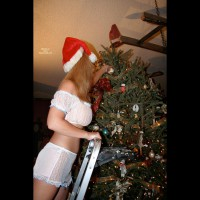 Under The Tree , She Loves Christmas