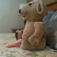 Jeni: Where Did Ted E Bear Go ?
