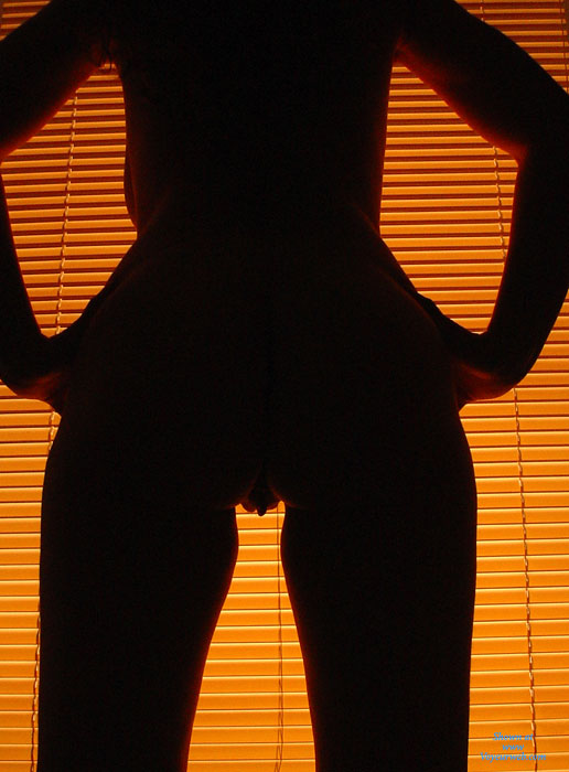 Profile Of Pussy Lips And Torso - Nude Wife , Shadow Pussy, Peeking Pussy, Horizontal Lines And A Feminine Form, Sexy Hanging Pussy, Backlit Pussy, Naked By The Window, Pussy From The Rear, Sexy Cunt Lips, Pussy Lips