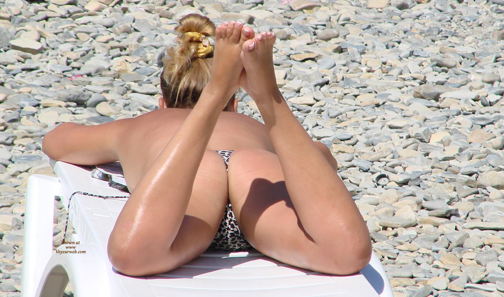 Beach Voyeur - Blonde Hair, Beach Voyeur, Sexy Ass , Painted Toes, Butt Cheeks, Tanned Body, Leopard Hammock For Her Ktty, Spotted Thong, Sexy Ass View, Spotted Kitty, Lying On Stomach