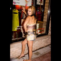 Brandy  , Brandi B. Is So Cute !!! She Posed For Me In Downtown Royal Oak, MI, Then In My Condo Afterwards.