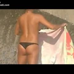 Portuguese Tits