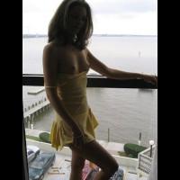 Robin - More Window Dressing