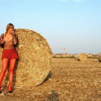 Farmer's Hot Daughter - Blonde Hair, Long Legs , Making Hay While The Sunshines, Dressed Sexy, Firm Breasts, Outstanding In Her Field, Red Fishnets, Fit Body, Girlfriend Seethrough, Standing In Front Of Round Bale Of Hay