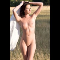 Nude Sexy Woman In Field - Dark Hair, Erect Nipples, Shaved Pussy, Small Breasts, Small Tits, Bald Pussy, Nude Amateur, Sexy Woman , Stiff Nipples, Frontal Nude, Hands On Her Head, Thin Body, Golden Hour Photo, Dear In The Meadow, Bald Pussy And Showing Her Armpits