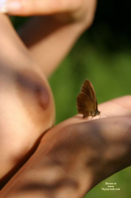Nipples Closeup - Close Up , Nipples Closeup, Closeup, Artistic Shoot, Nipple, Nude In Outdoors, Naked In Outdoors, Butterfly On Hand, Blurry Tits