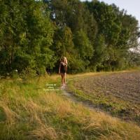 Seethrough Walk
