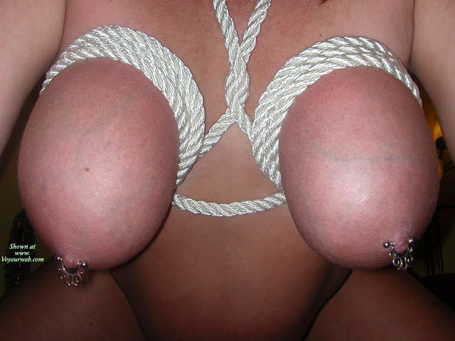 Breast Bondage - Big Tits, Bondage, Large Breasts, Pierced Nipples , Nipple Jewerly, Tied Up Tits, Tied Up Big Tits, Tit Bondage, Bdsm Breasts Tied, Large Torpedo Tits, Rope