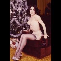Vixen In Stockings