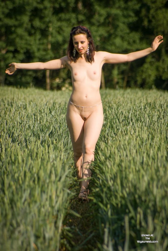Summerfield , Sylvie Again, Strolling Across A Sunny Field