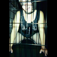 Caged Jade