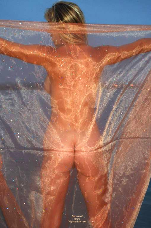 Nude From Behind - Spread Legs, Naked Girl, Nude Amateur , Sheer Back Nude, Horizontal Butt Cleavage, Nude, Sheer Delight, Sheer Ass Shot, Standing, Arms Spread, Arms And Legs Spread, See Through Sheet, Standing With Arms Out (from Behind)