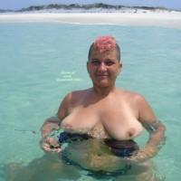 Spoiled Brat-shell Island