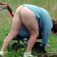 Wife Working