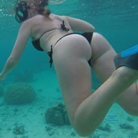 Wifes Ass While Diving Underwater in Moorea - Bikini, Water, Wet, Sexy Body, Sexy Figure, Wife/wives , Underwater, Bikini, Butt, Legs