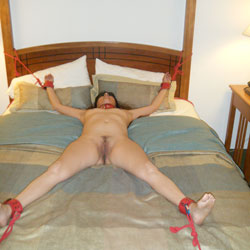 Friends Wife II - Brunette Hair, Small Tits, Blowjob, Wife/wives , She Is Still Tied Up, Collared And Blindfolded.